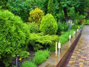 Монтаж освещения в саду, правила монтажа освещения на участке, ландшафтный дизайн Мелитополь