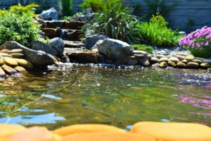 Пруд для карпов кои, ваша рыба будет жить, водоем для рабы, ландшафтный дизайн