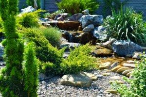 озеленение прудов и водопадов, водная архитектура и озеленение водоемов, водопад каскад, ландшафтный дизайн