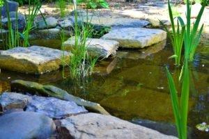 шаговая дорожка через водоем, неповторивые ощущения от водоема, ходьба по воде, ландшафтный дизайн