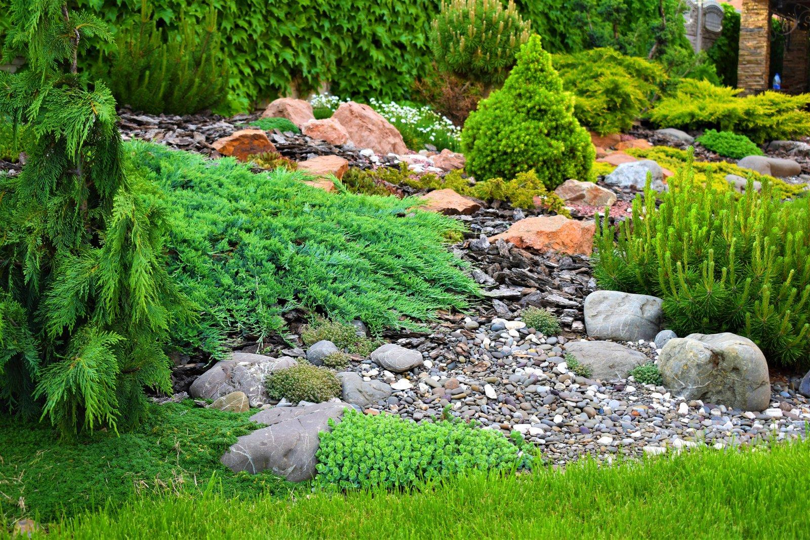 популярность камни в саду дизайн фотогалерея сколько метеоритов лежит