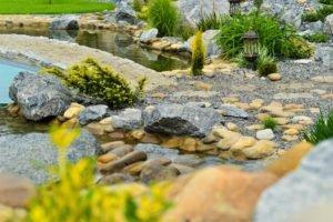 строительство прудов для рыбы, строим комфортные пруды для вас и рыбы, пруд для рыбы, ландшафтный дизайн