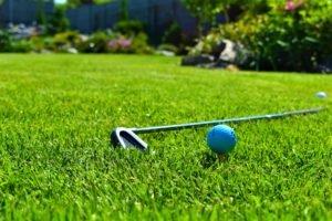 уход за газоном, газон для игры в гольф, газон гольф Мелитополь, ландшафтный дизайн