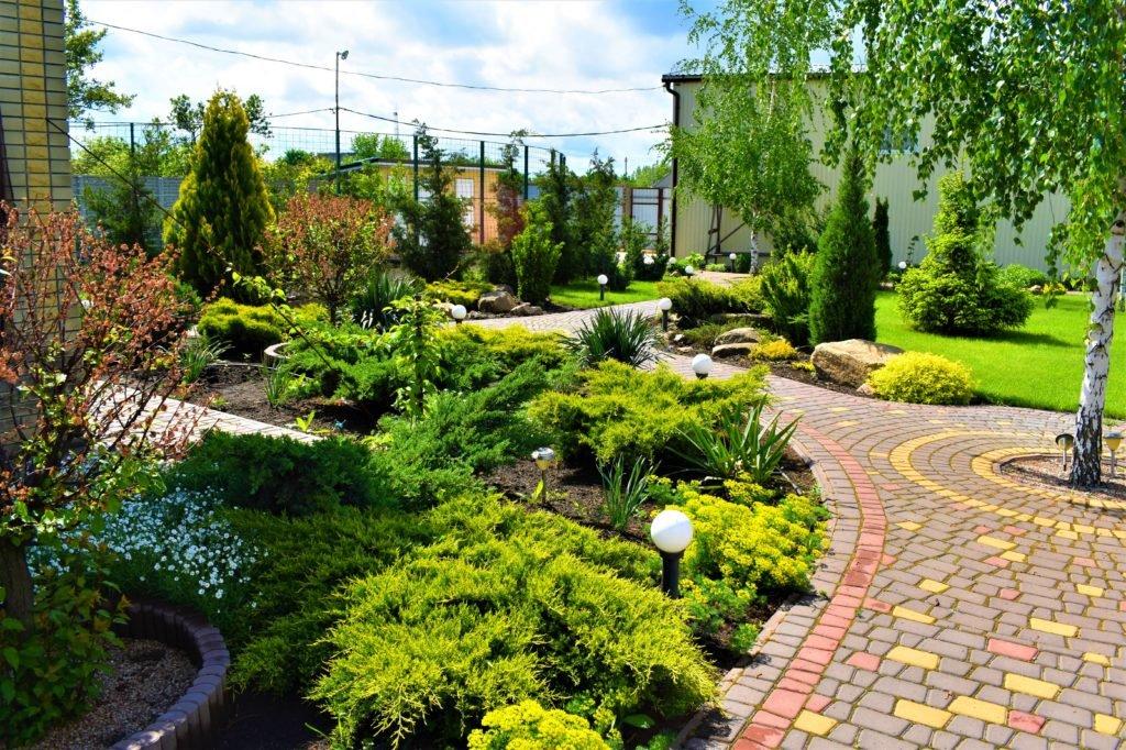 Озеленение дачи Мелитополь, озеленение двора Мелитополь, озеленение участка Мелитополь, ландшафтный дизайн