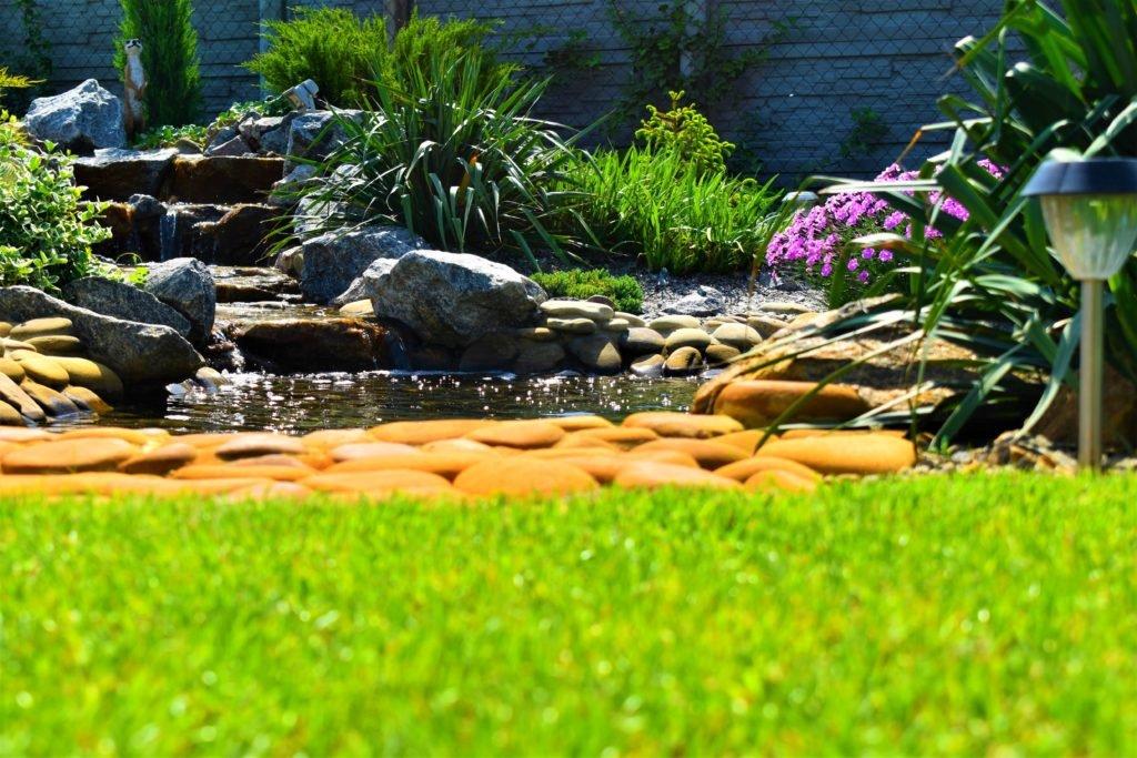 Пруд на даче, проект пруда на даче, создание пруда на даче, как создать пруд на даче
