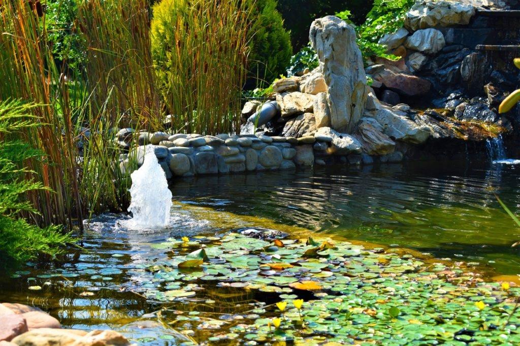 Строительство искусственного фонтана Запорожье, благоустройство и озеленение искусственного фонтана Запорожье, искусственный фонтан Запорожье, создание искусственного фонтана Запорожье