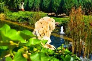 биопруд с фонтаном, биопруд с водопадом, биопруд рыбой, ландшафтный дизайн