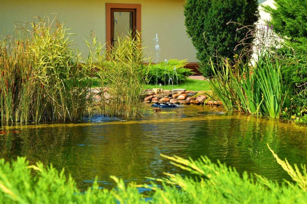 фонтан в ландшафтном дизайне, природные фонтаны, фонтан в пруду, ландшафтный дизайн Запорожье
