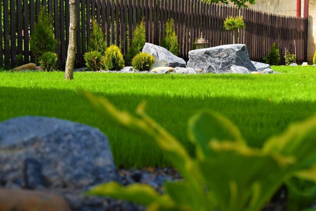 озеленение дачи, озеленение парка, озеленение сада, озеленение двора, ландшафтный дизайн