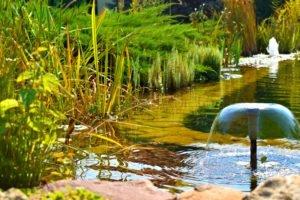 строительство фонтанов в Запорожье, создание фонтанов в Запорожье, устройство фонтанов в Запорожье, стоимость фонтанов в Запорожье, цена фонтанов в Запорожье