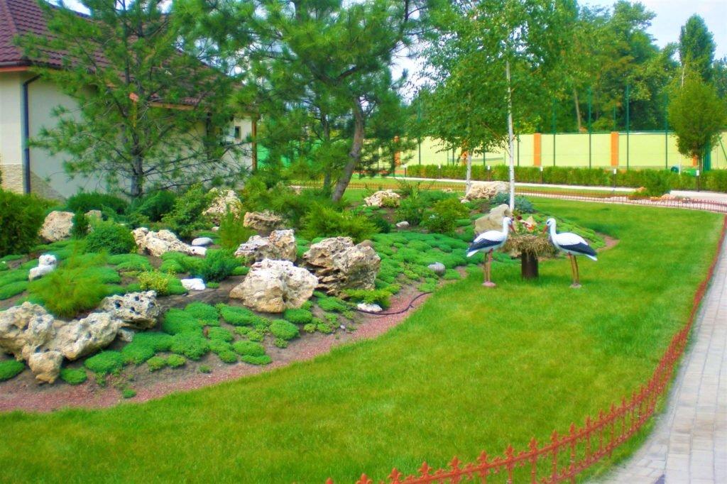 Газон перед магазином Днепр, газон на предприятии Днепр, газон на производстве Днепр, газон перед кафе Днепр
