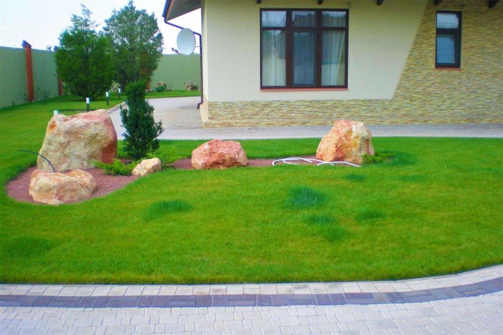 Газон перед магазином Киев, газон на предприятии Киев, газон на производстве Киев, газон перед кафе Киев