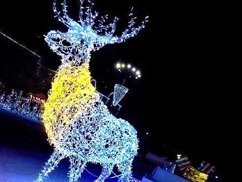 светящееся фигуры на новый год Мелитополь, уличные фигуры с ланмпочками Мелитополь, фигуры из лед светильников Мелитополь, олень светящийся уличный Мелитополь