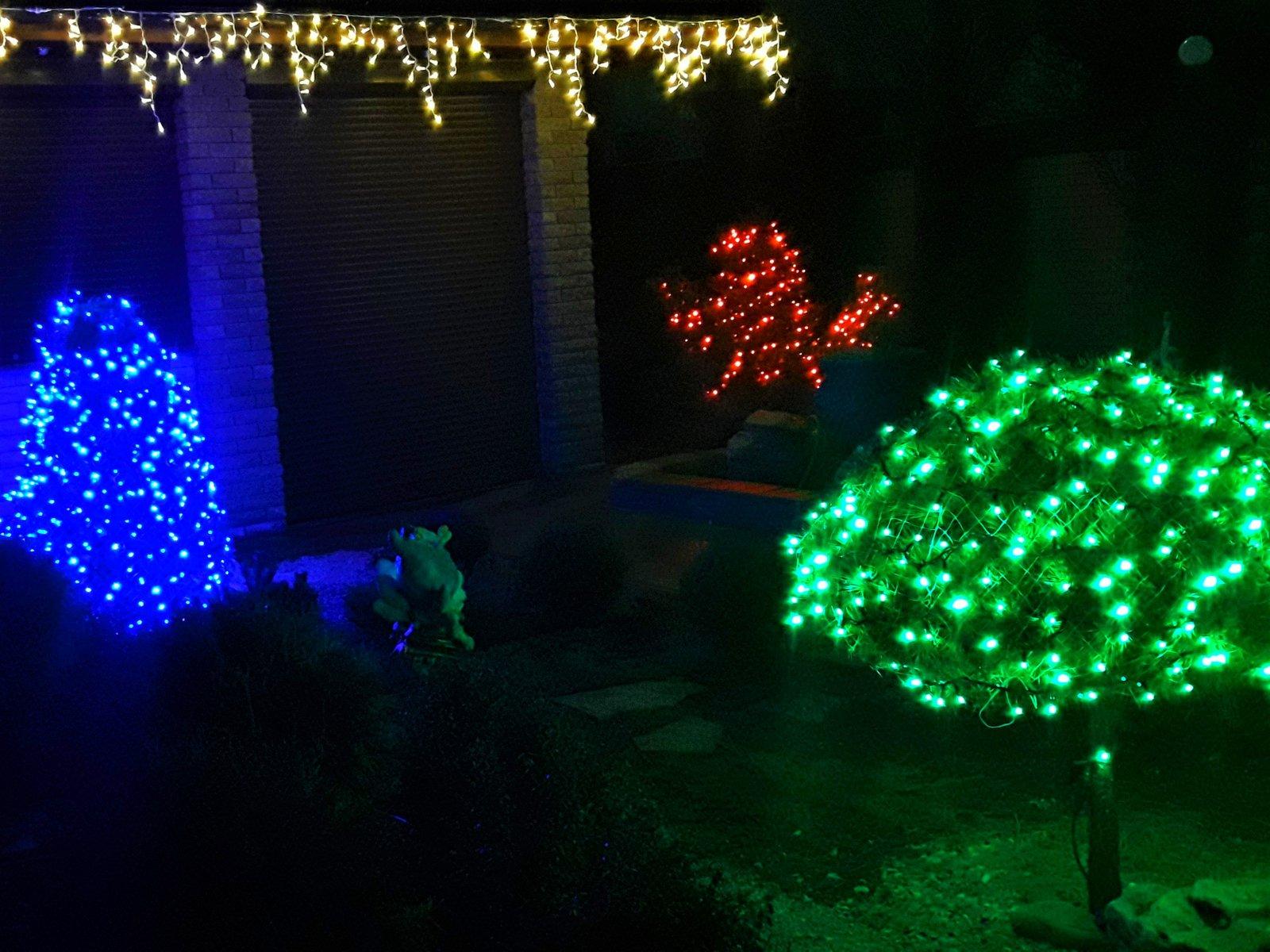 украсить растения на новый год в саду Мелитополь, специалисты по установки гирлянд Мелитополь, дизайн украшение на новый год Мелитополь, создать сказку на новый год Мелитополь