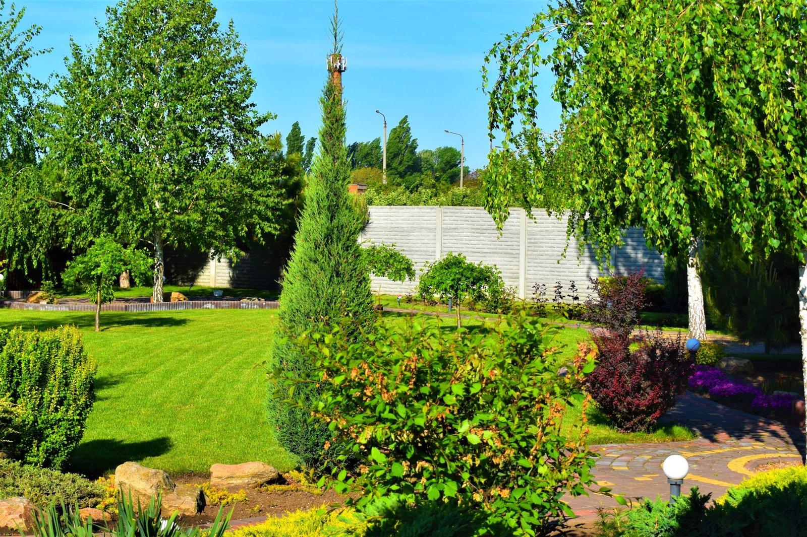 сад огород дизайн Киев, ландшафтный дизайн для дачи Киев, киевская форма по ландшафтному дизайну