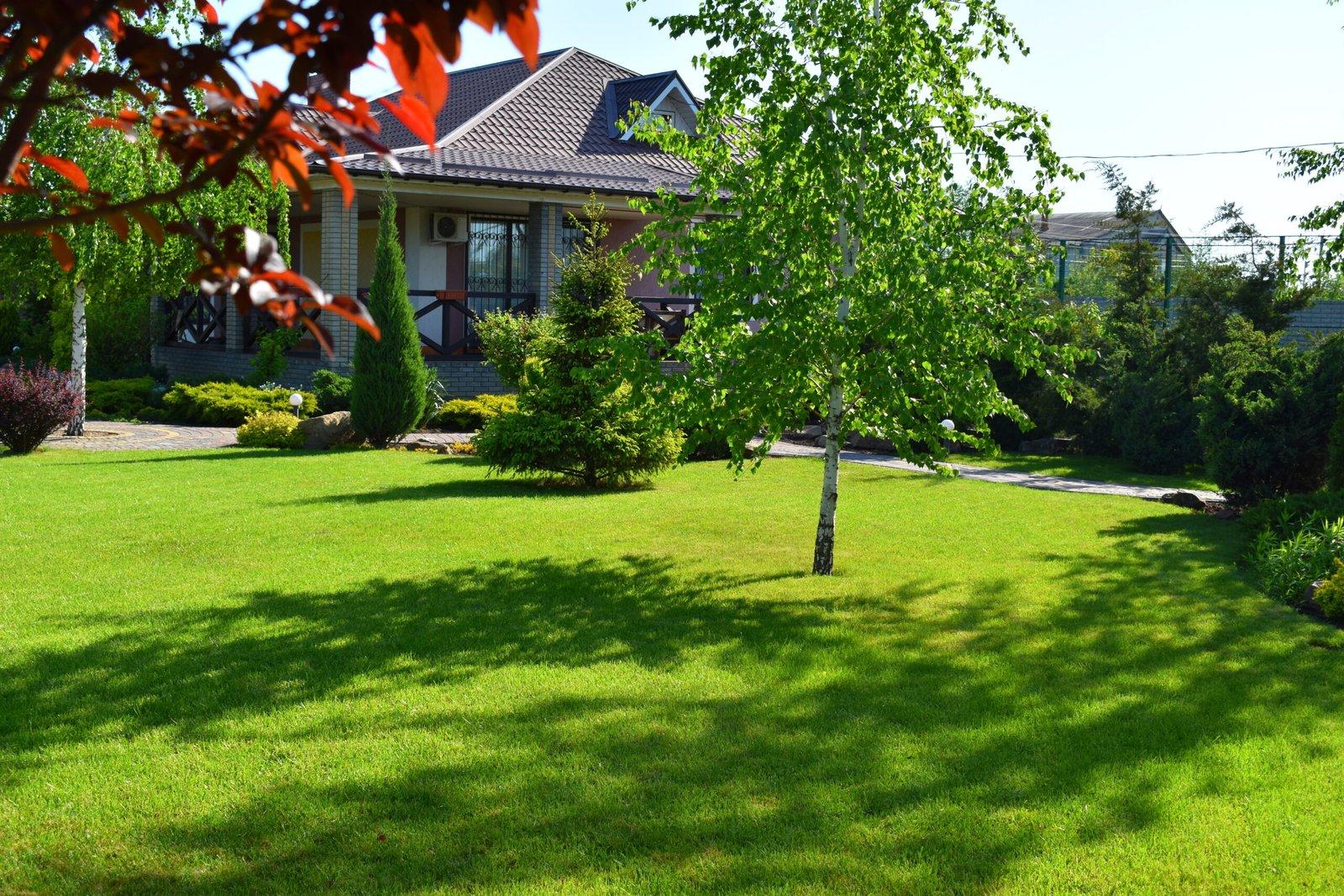 Газон для сада в Киеве, газон в саду в Киеве, газон сад Киев