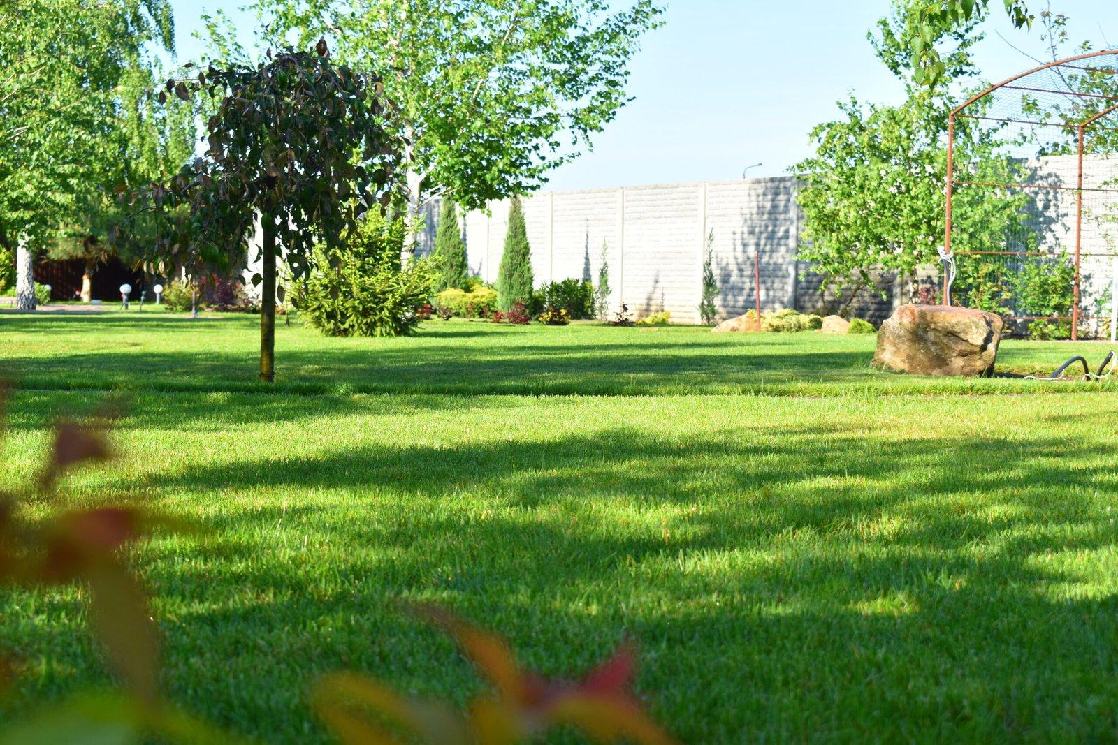 Спортивный газон для ландшафтного дизайна, газон для игр, спортивный газон в Киеве