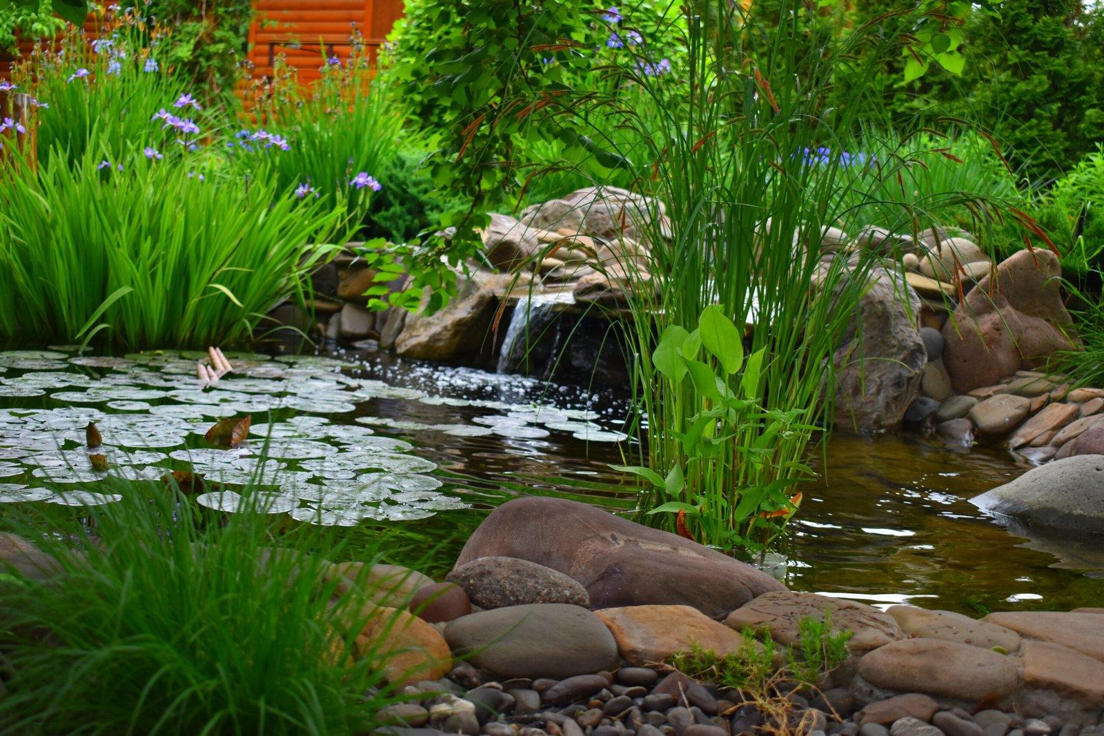 искусственный пруд, бассейн, беседка, площадка для барбекю, дренаж территории