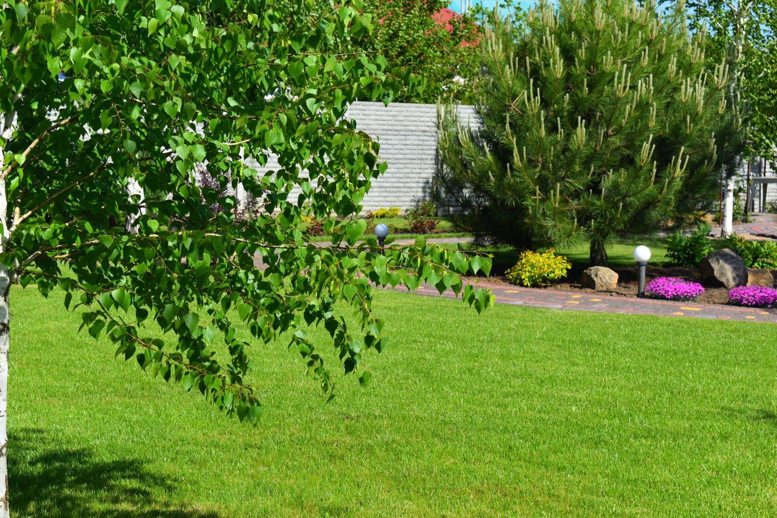 стрижка газона, питание газона, стойкий газон