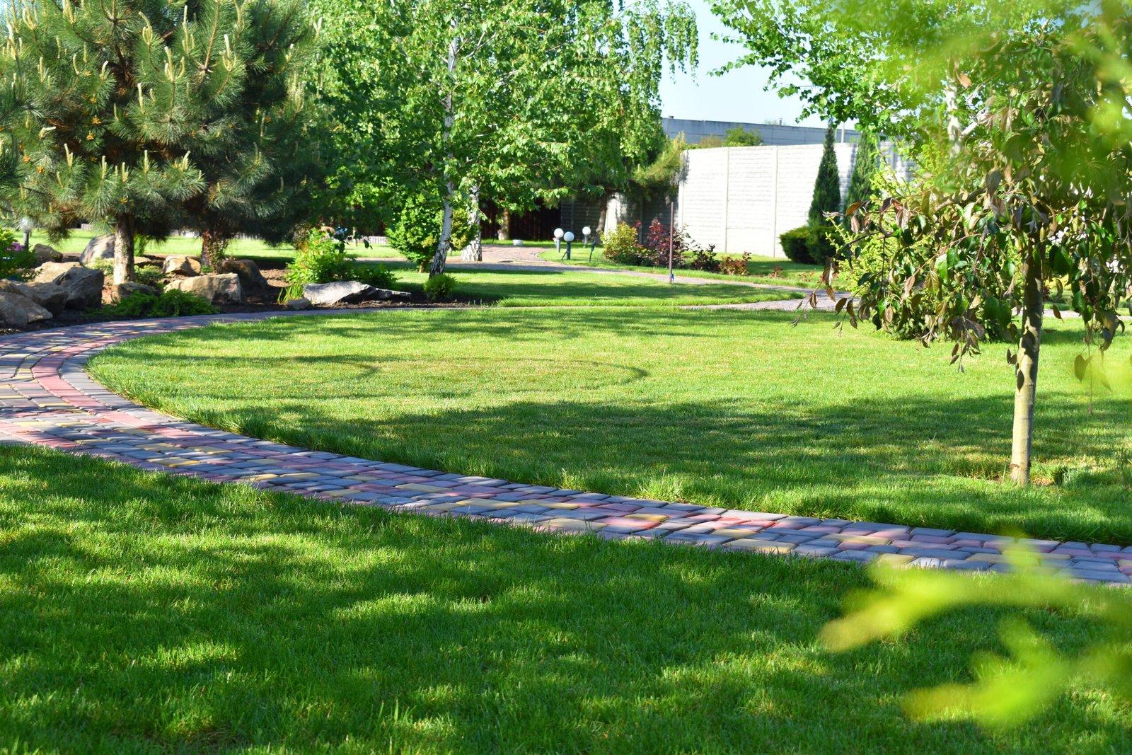 выполнение укладки газона, выращивание газона, газон на огромной площади