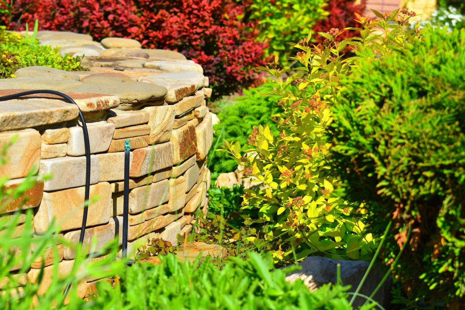 сад, клумба, декоративный огород, альпинарий,