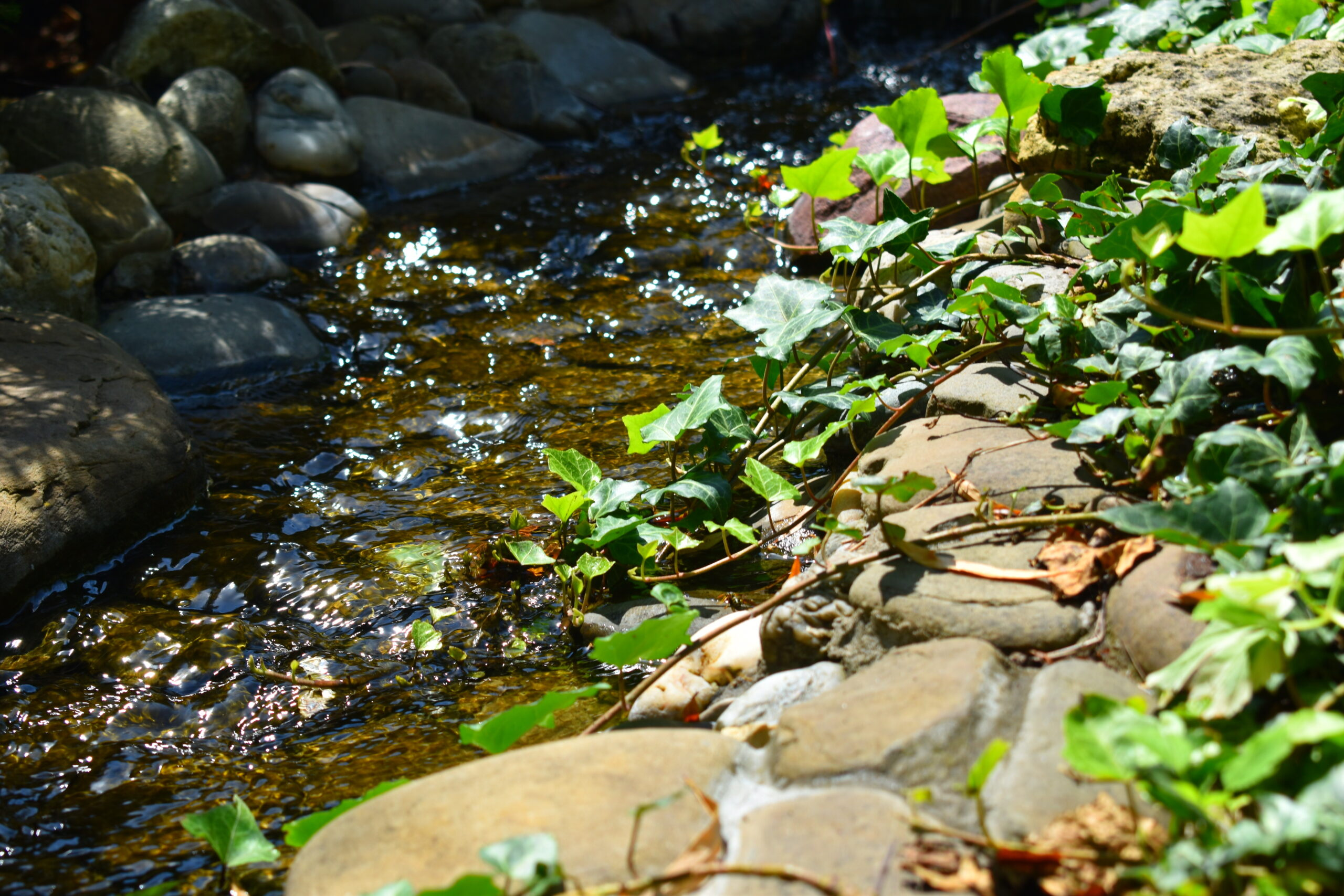 дренаж при высоком уровне грунтовых вод, изменение рельефа на участке, дренажная система на участке,